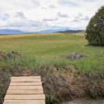 grist-ute-view-footbridge